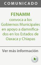 fenamm_comunicado